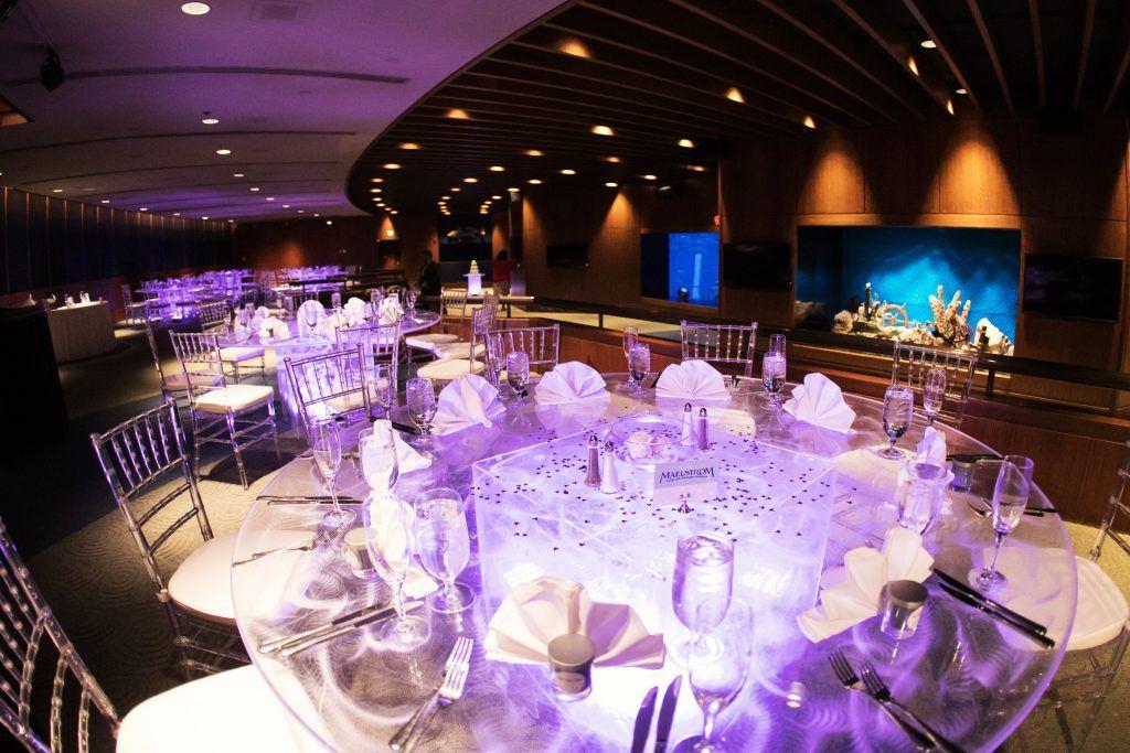 Living Seas Salon EPCOT in 2020 Fairytale weddings