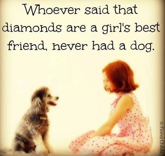 A Woman's Best Friend Is Her Dog Unconditional Love Doggies Mesmerizing Quotes About A Girl And Her Dog