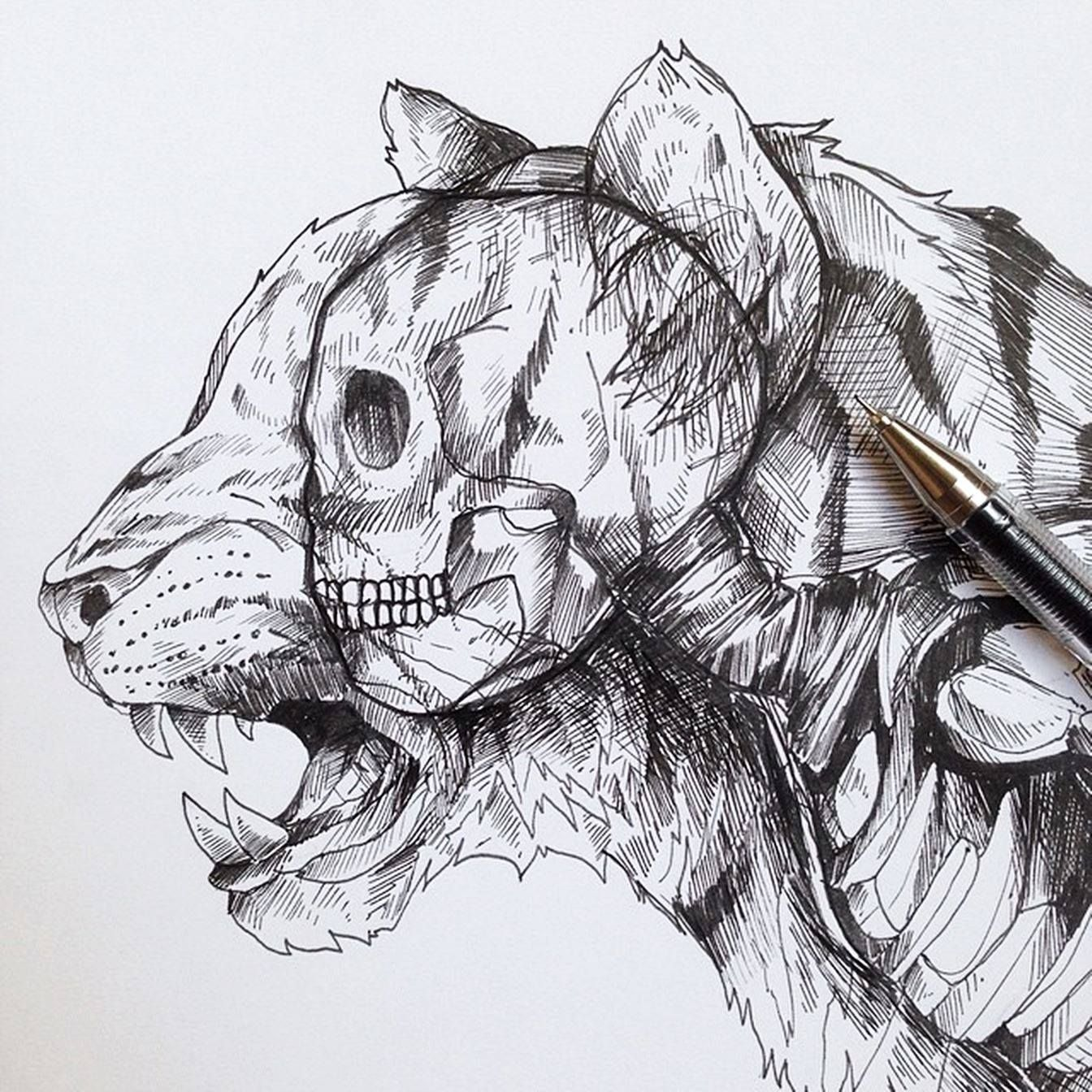 Awesome drawings by alfred basha