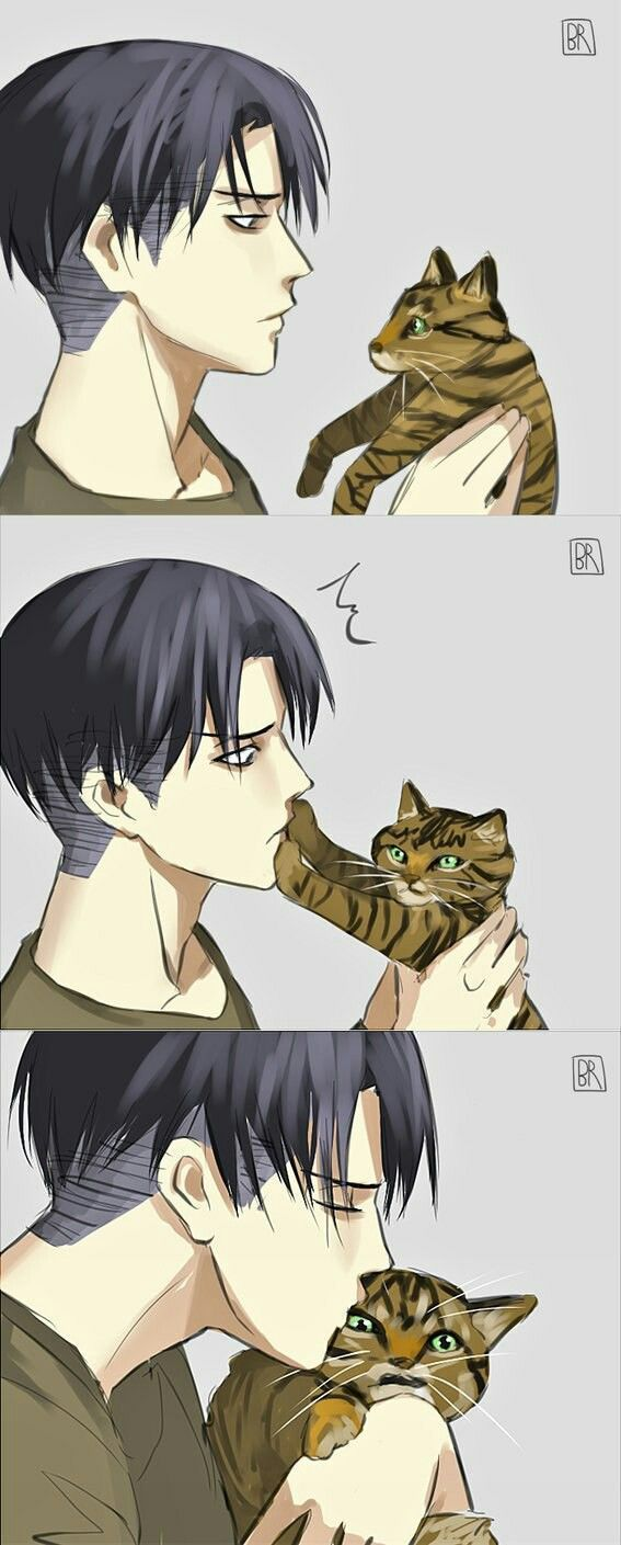 Levi X Reader One-shots - Plans for thank you gift