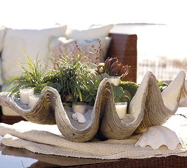 Clamshell concrete planter.