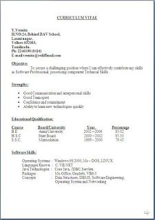 Security Officer Resume Sample Beautiful Excellent Professional