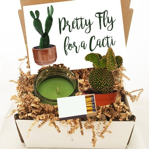 Cactus Gift Box Succulent Gift Box Cactus Gift For