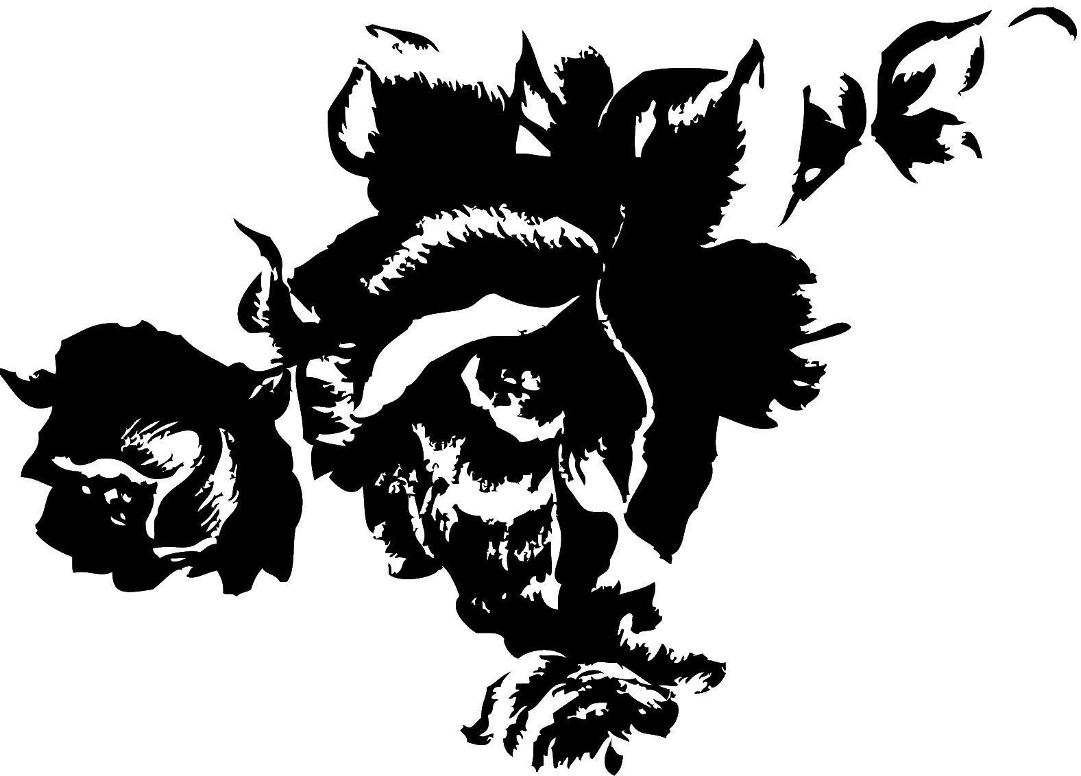 白黒の花のイラスト-版画風のバラ | こーひー | pinterest | 花の