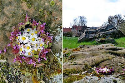 mano kellner, nature mandala, groß steinum