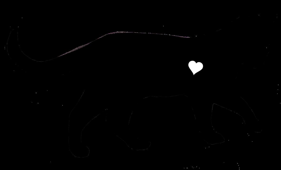 Black Cats Black Cat Clipart Black Cat Clip Art Clipart Black Cat Cat Clipart PNG Black Cat Black Cat PNG Cat PNG Cat Clip Art