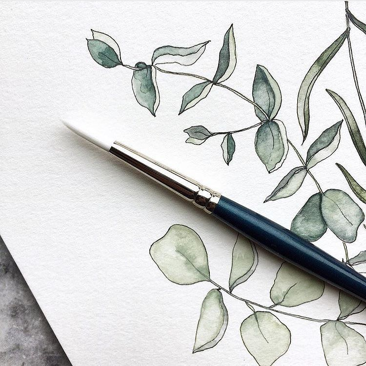 Watercolour Crispness From Themintgardener Shared By
