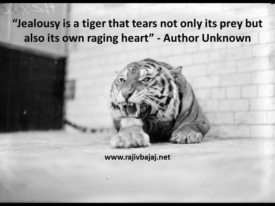 """""""Jealousy is a tiger that tears not only its prey but also ..."""