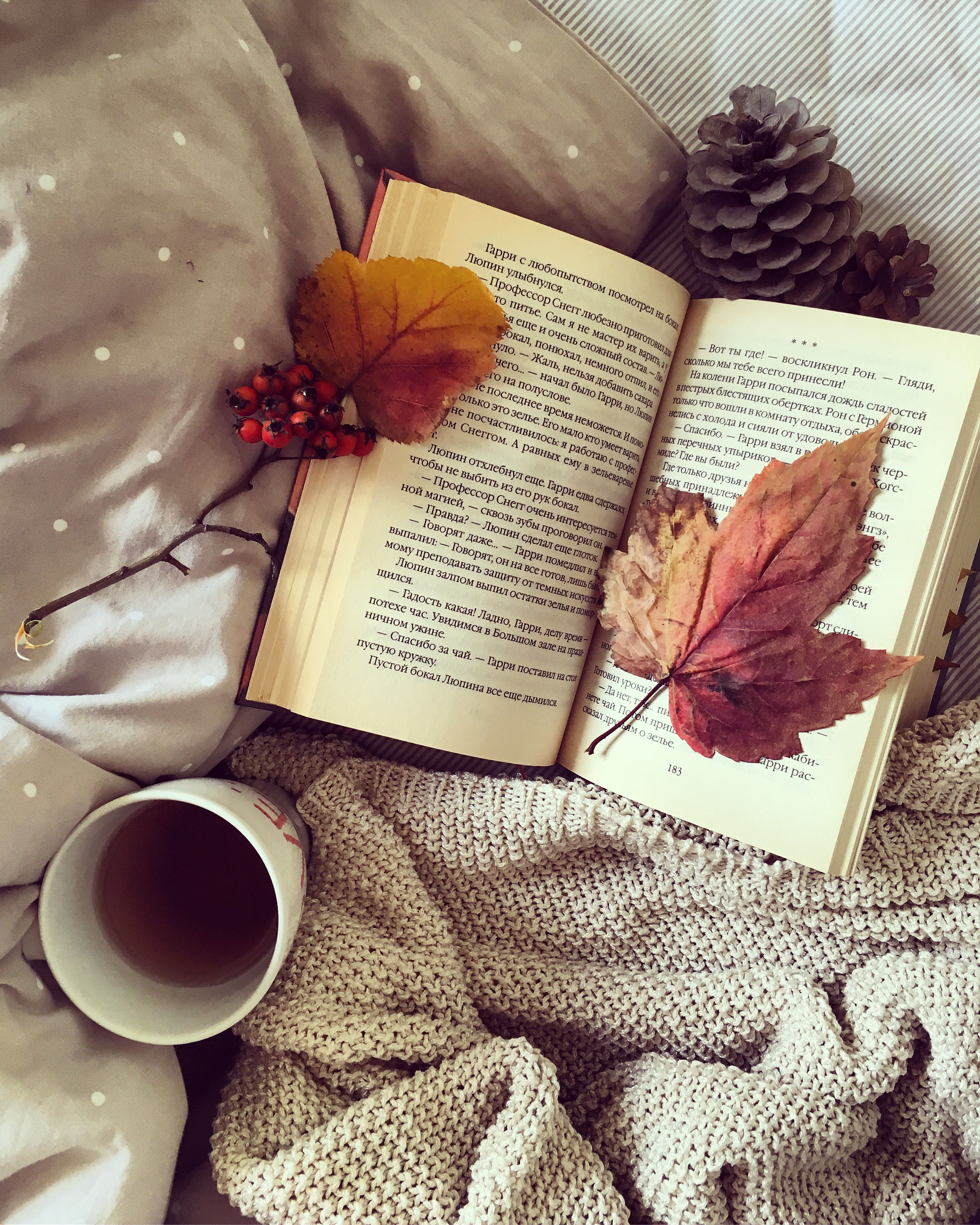 12 Classics To Read If You're Obsessed With Fall