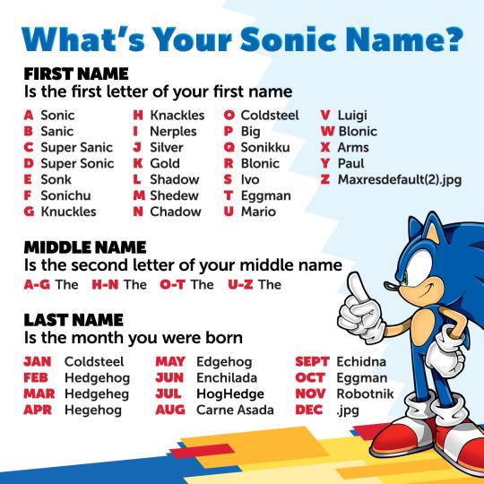 Sonic The Hedgehog Sonic Sonic The Hedgehog Sonic Funny