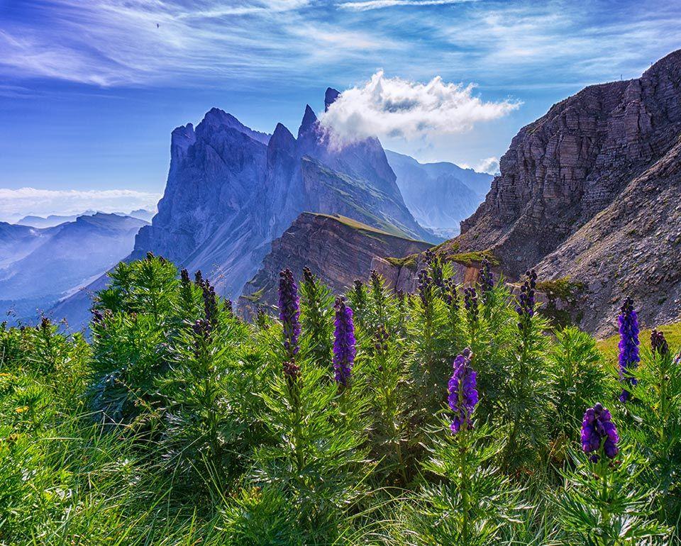 08e7231433a7290b8fd6024e0f2eaa2e - Selva Di Val Gardena Cosa Vedere