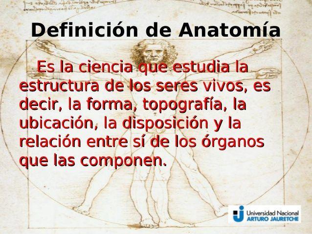 Resultado de imagen de anatomia definicion | Localización de ...