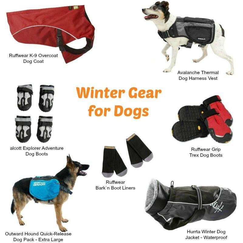Prepare For Winter Hiking And Trailtime With Sierratradingpost Winter Hiking Dog Vest Harness Hiking Dogs