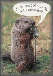 08e879ca17acefc700cafc912d32caff you'll be singing the blues if a groundhog (aka woodchuck) gets,Funny Groundhog Meme