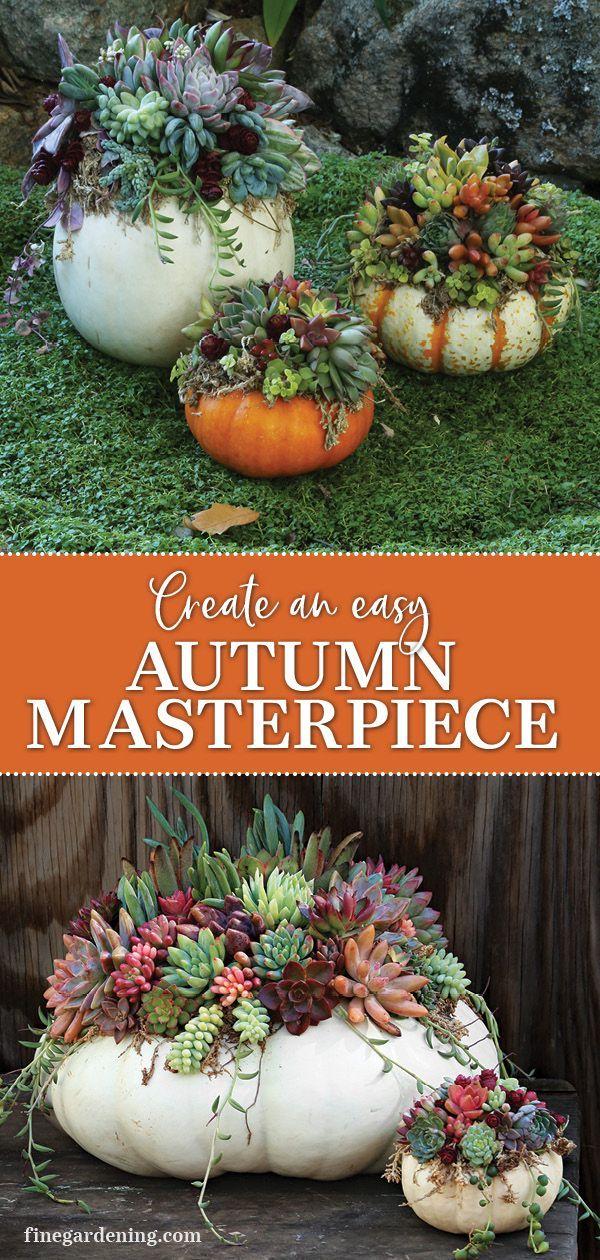 Garden Decoration: Succulent Pumpkins Create an autumn succulent pumpkin centerpiece with this step-by-step guide.Create an autumn succulent pumpkin centerpiece with this step-by-step guide.