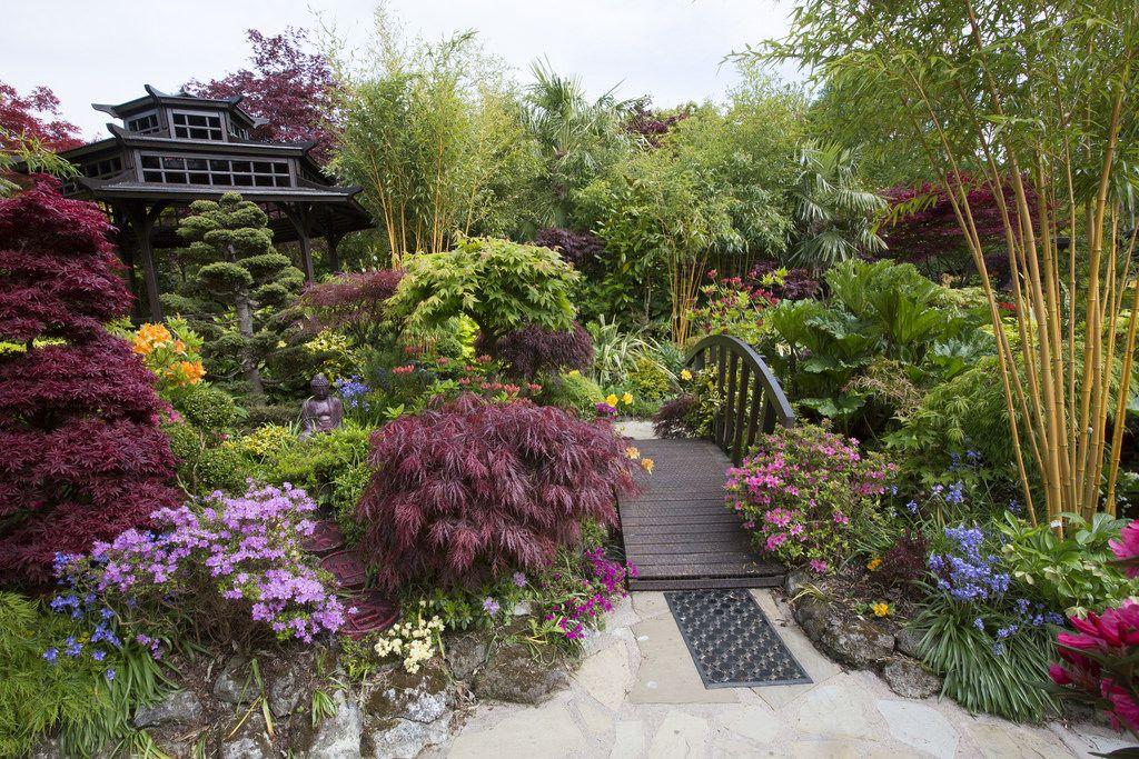 Pagoda garden in late spring Ландшафтный дизайн и Дизайн