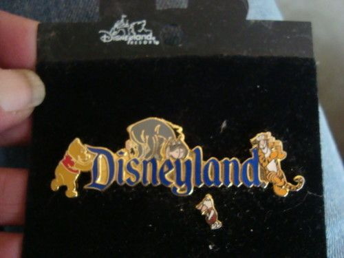 VTG DISNEYLAND RESORT Pooh tiger honey bear the donk TURTLE PINBACK PIN Jewelry