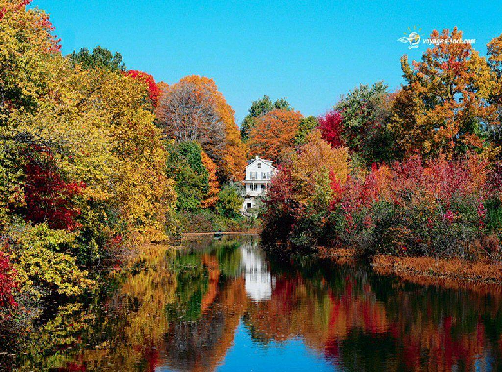Epingle Par Eva Louve Sur Autumn Harvest And Thanksgiving Paysage Automnal Fond Ecran Gratuit Paysage Paysage Automne