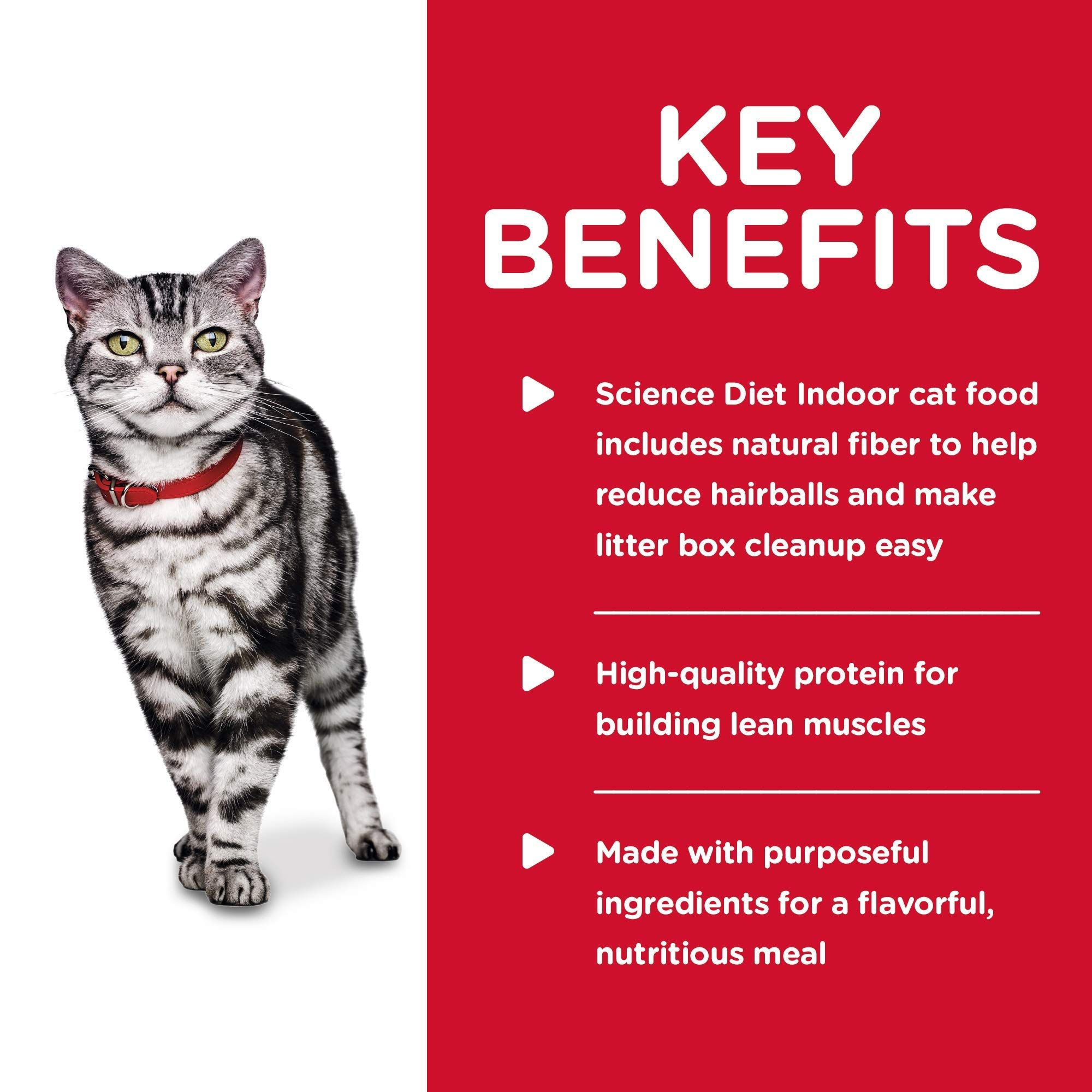 Hill S Science Diet Wet Cat Food Adult Indoor 5 5 Oz Cans 24 Pack Ad Wet Sponsored Cat Food Hill Hills Science Diet Indoor Cat Food Science Diet