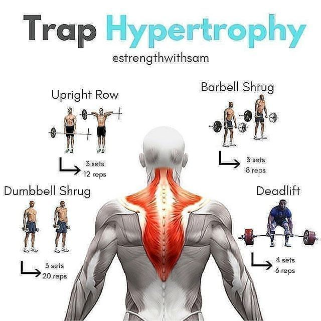 Trap workout  @gym.ability  Via: @strengthwithsam  #fitnessmotivation #bodybulding gym pins  Trap workout  @gym.ability  Via: @strengthwithsam  #fitnessmotivation #bodybulding #fitnessaddict #fitlife #fitnation #fitlifestyle #abs #shredded #gym #fitnessmodel #workout #loveit #healthyfood #training #healthlifestyle #instaport #trainstation #active #healthyeating #best #ripped #sixpack #toptags #exercise #aesthetics #fitness #workouts #trapsworkout Trap workout  @gym.ability  Via: @strengthwithsam #trapsworkout