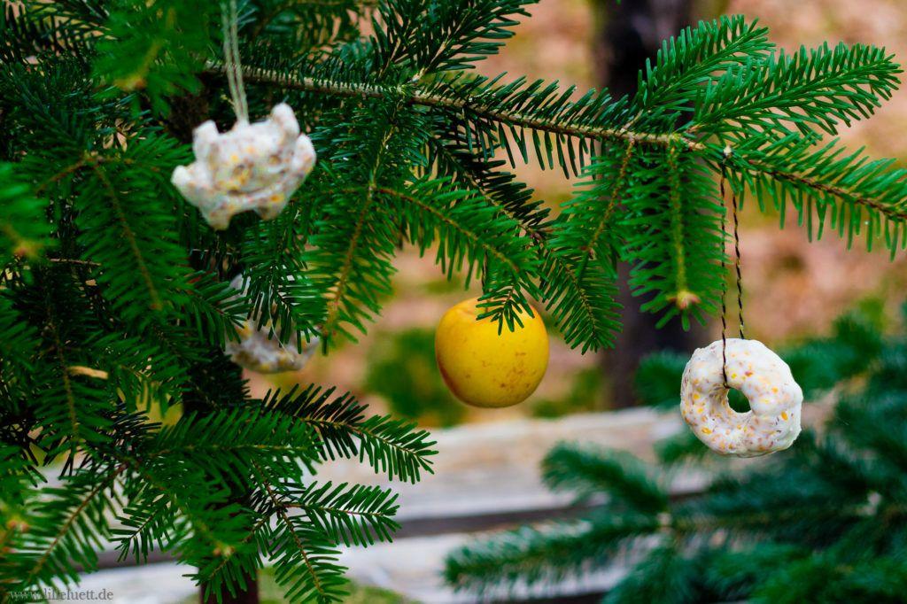 Hühner halten im Garten - Ein Weihnachtsbaum für die Hühner / Wintersnacks - Lillelütt