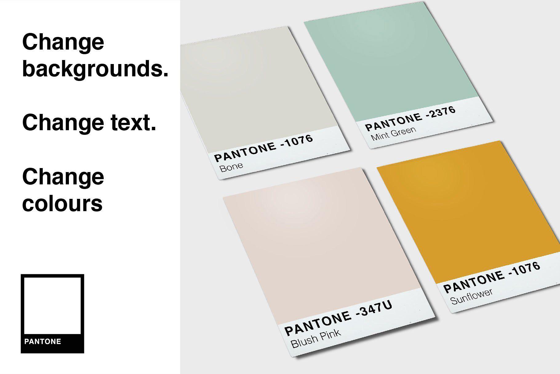 Pantone Colour Mockup Bundle Pantone Book Pantone Color Pantone