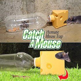 Get Rid Of Mice Naturally With A Green Bottle Usa Humane