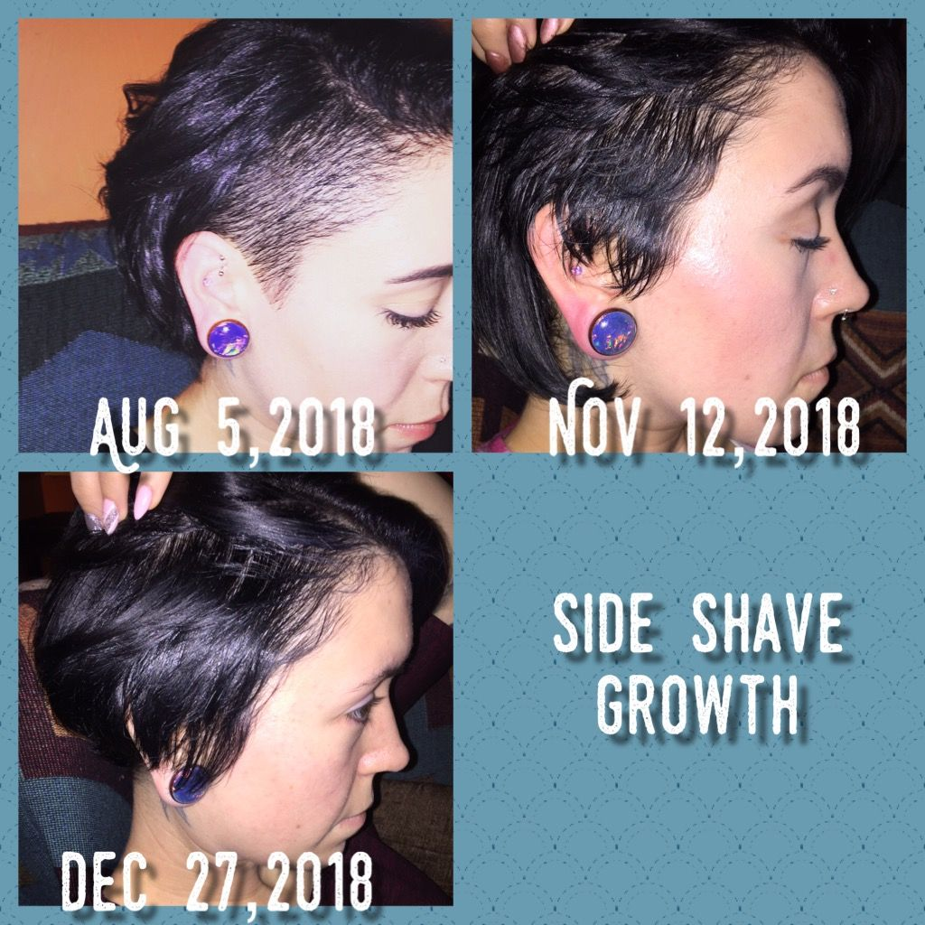Side Shave Grow Out Shaved Sides Shaving Grow Out