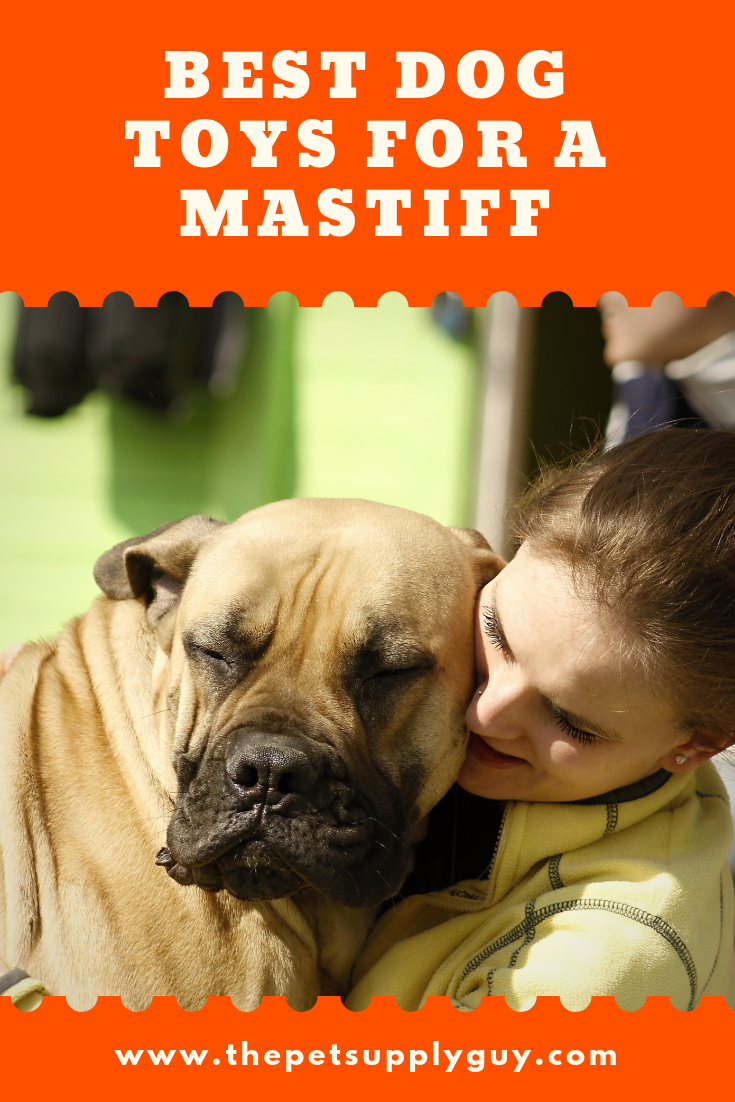 Indestructible Dog Toys For Mastiffs The Pet Supply Guy Dog Toys Indestructable Best Dog Toys Mastiff Puppies