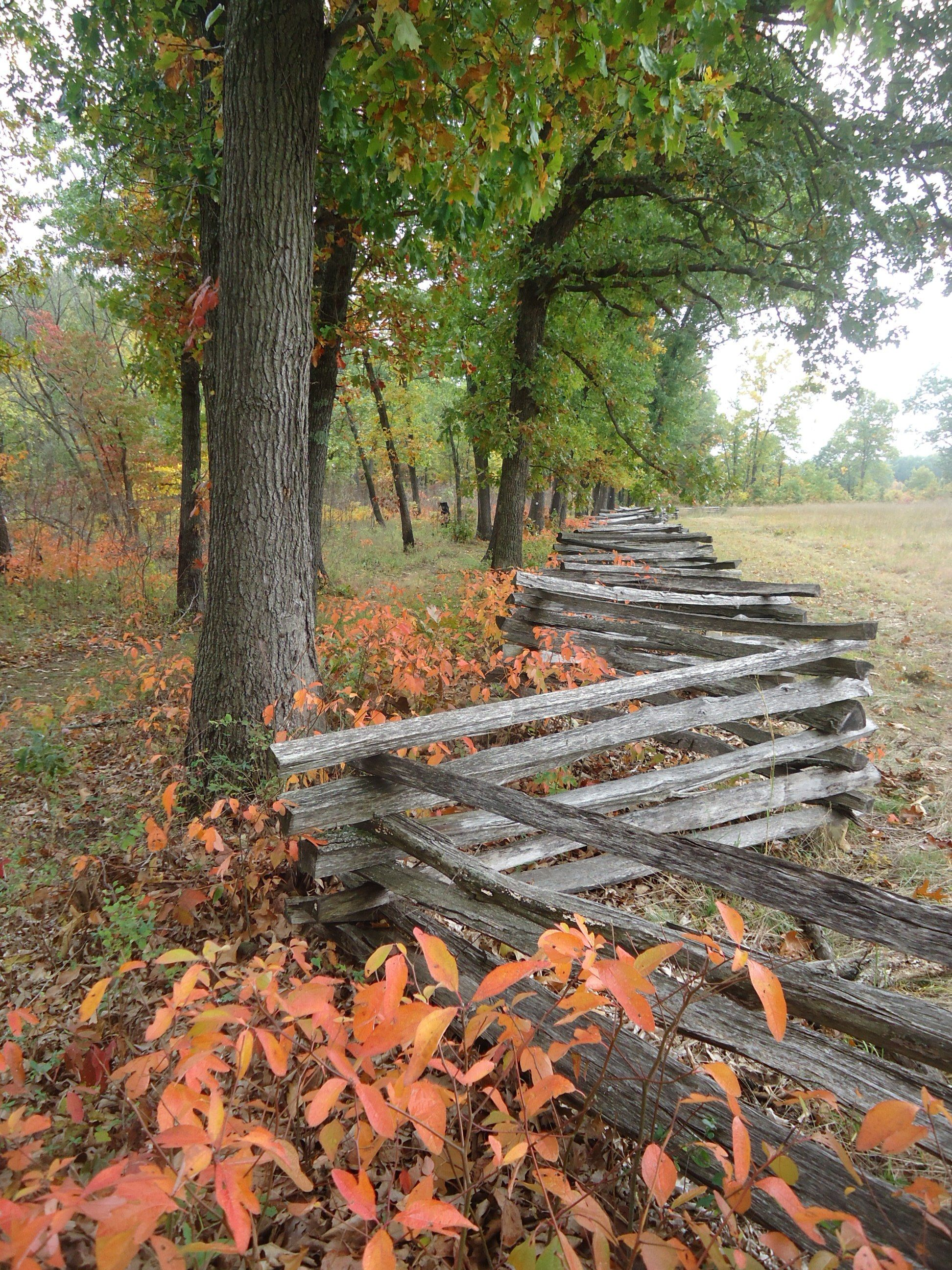 Pea Ridge National Military Park, near Rogers, Arkansas