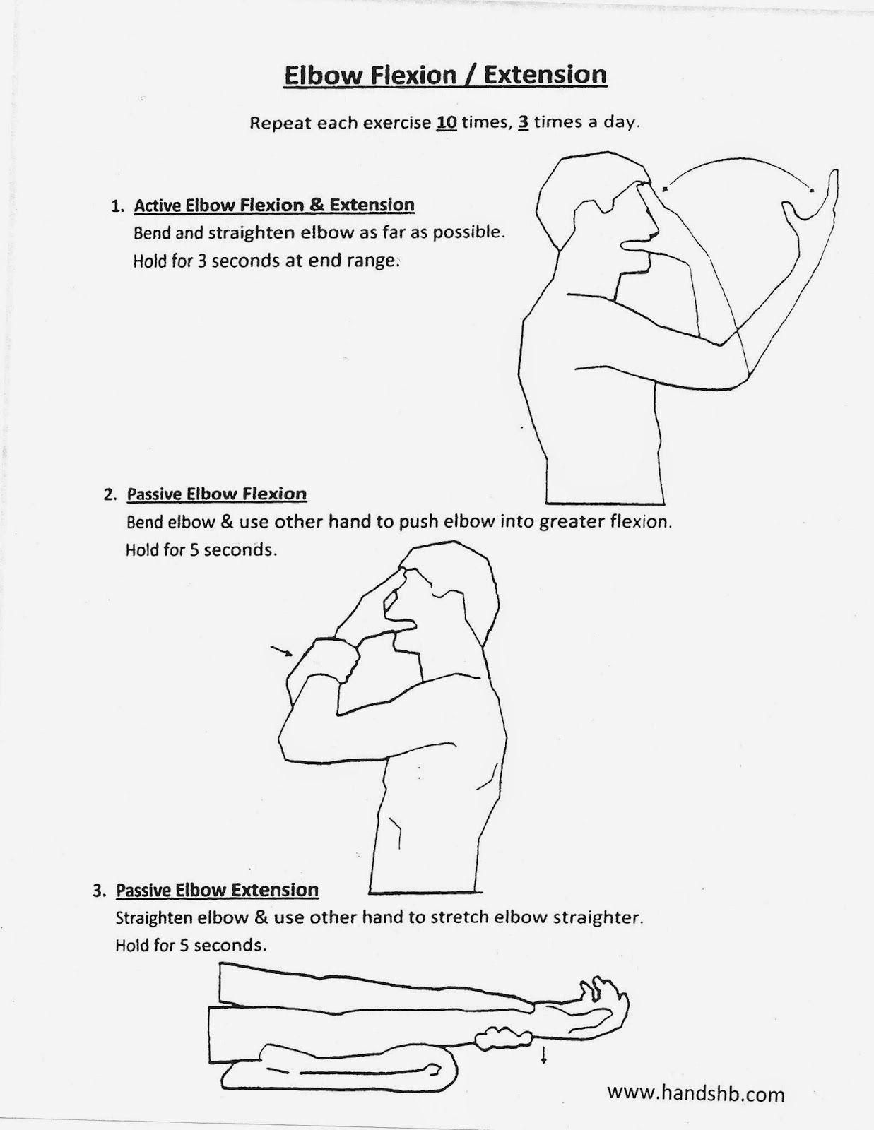 HB Hands: Elbow Flexion / Extension | OT- UE | Pinterest | Exercises ...