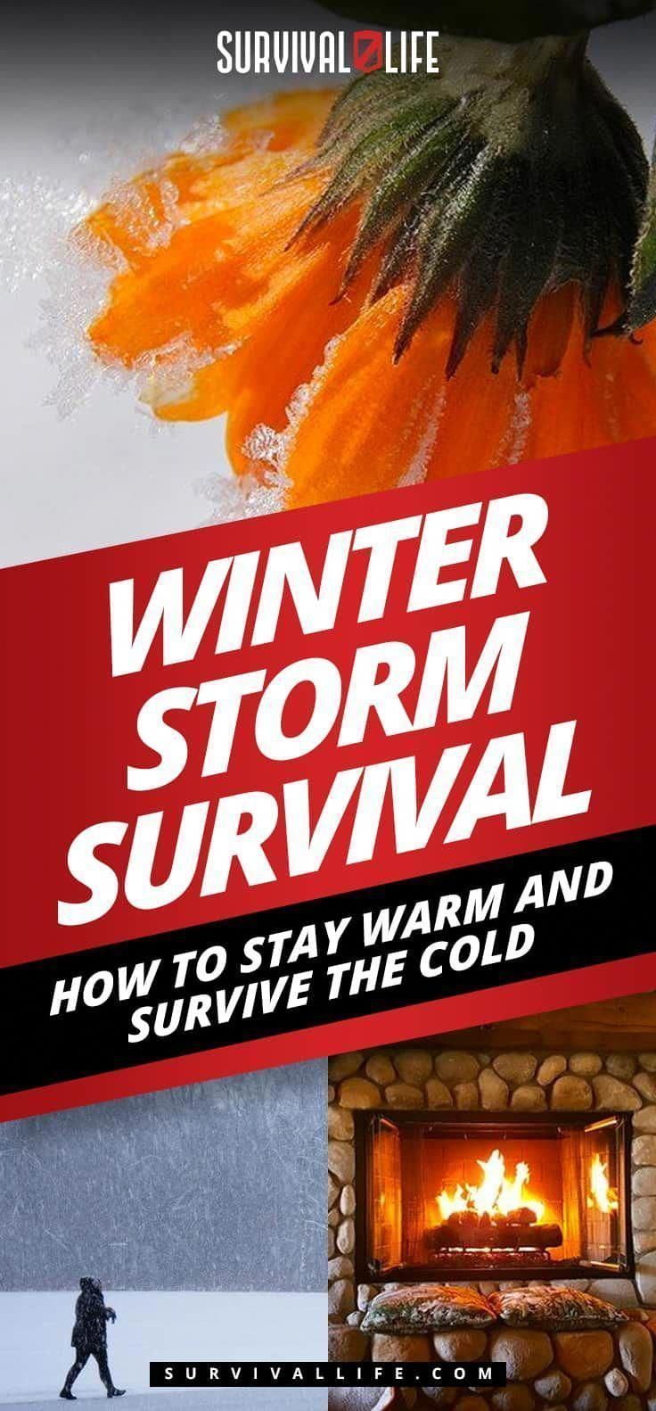 Winter Storm Survival: How To Stay Warm And Survive The Cold #wintersurvivalsupplies Winter Storm Survival: How to Stay Warm and Survive the Cold #familysurvivaltips #wintersurvivalsupplies Winter Storm Survival: How To Stay Warm And Survive The Cold #wintersurvivalsupplies Winter Storm Survival: How to Stay Warm and Survive the Cold #familysurvivaltips #wintersurvivalsupplies Winter Storm Survival: How To Stay Warm And Survive The Cold #wintersurvivalsupplies Winter Storm Survival: How to Stay #wintersurvivalsupplies