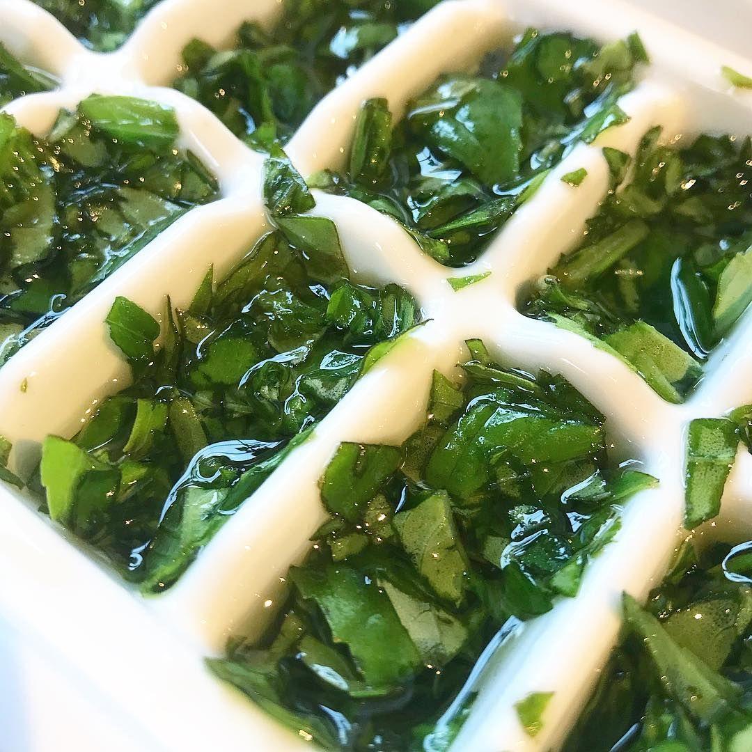 5 Ways to Preserve Fresh Basil So You Enjoy it All Year