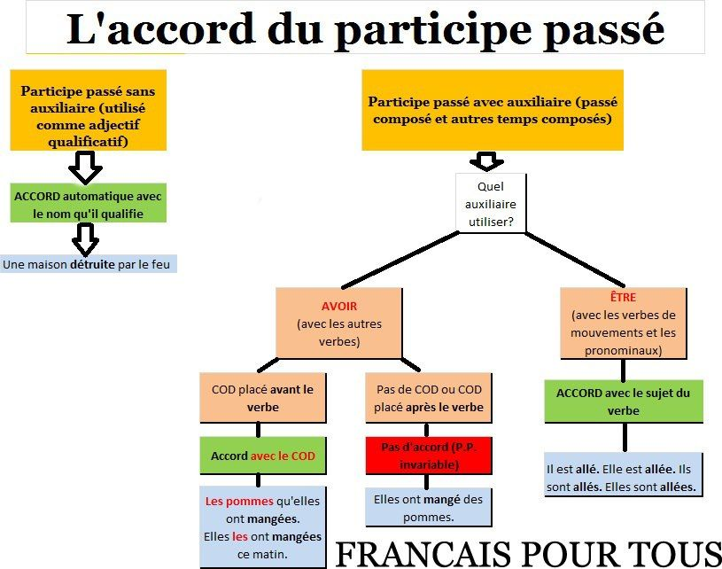 Carte Mentale Accord Du Participe Passe.Accord Du Participe Passe Les Verbes Et Les Pronoms Sujets