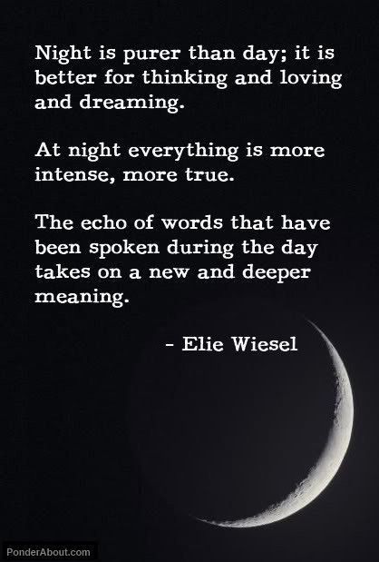 Night Is Scary But Comforting Words Great Quotes Inspirational Quotes