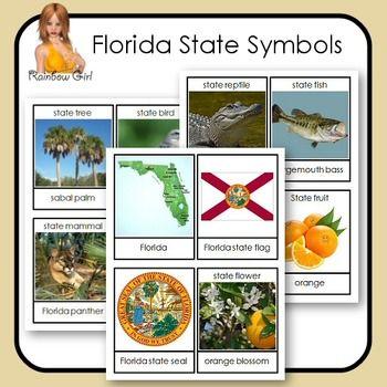 Florida State Symbols Cards For Kay Lynn Pinterest Symbols