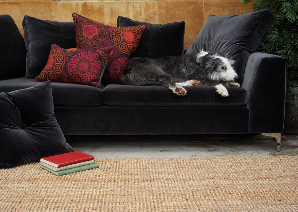 The Slangevar Sofa In Elephant Velvet Pure Comfy Velvet Sofa Furniture Sofa
