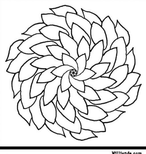 flower Page Printable Coloring Sheets | Printable coloring pages of ...