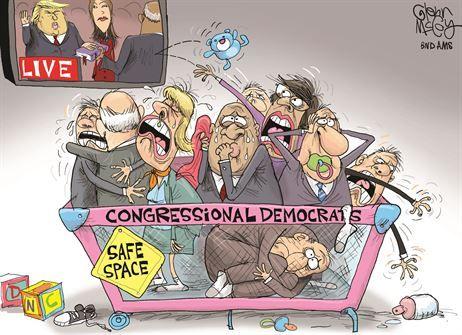Image result for wacko democrat cartoons
