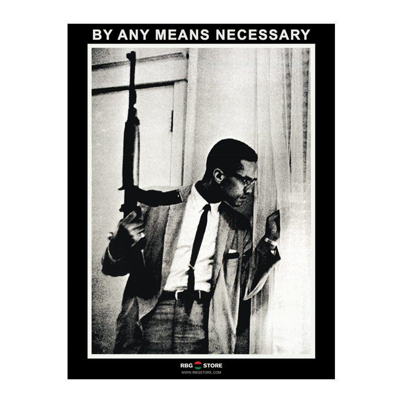 the rbg store malcolm x by any means necessary gun poster 11 99