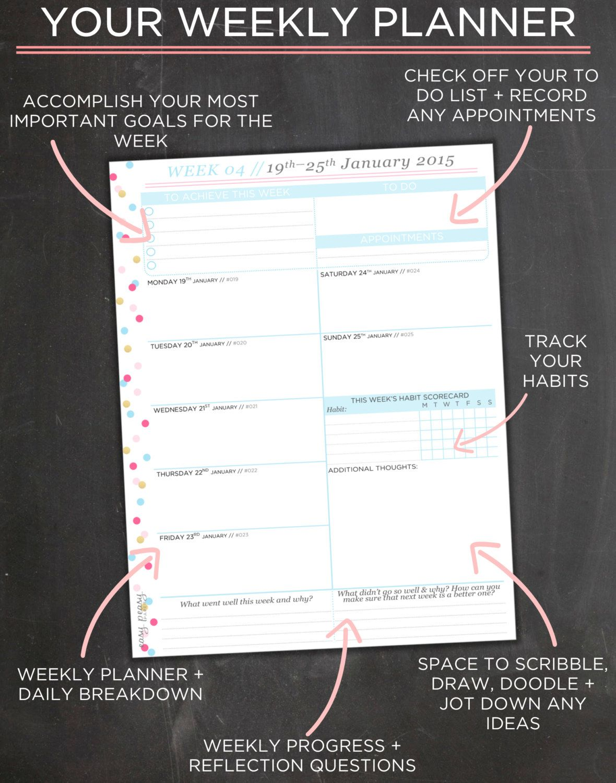 Planner Organizer 8 5x11 Planner By