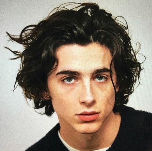 Timothée Chalamet - - Male models -
