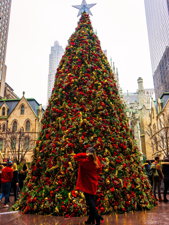 #newyorkcity #christmasinnewyork #christmasinnyc #newyorkholidays #dykerheightschristmaslights #christmasdecorations #nycchristmas #newyorkliebe #nycgo #nycpride #nycworld #streetsofnyc #nycblogger #cityscapenyc #nyclife #ignyc #nyc_explorers #nycinstagram #instanyc #travelnyc #nycparks #nycprimeshots #nycc #nycliving #imagesofnyc #rockerfeller #peruana #peru #santacon #nuevayork