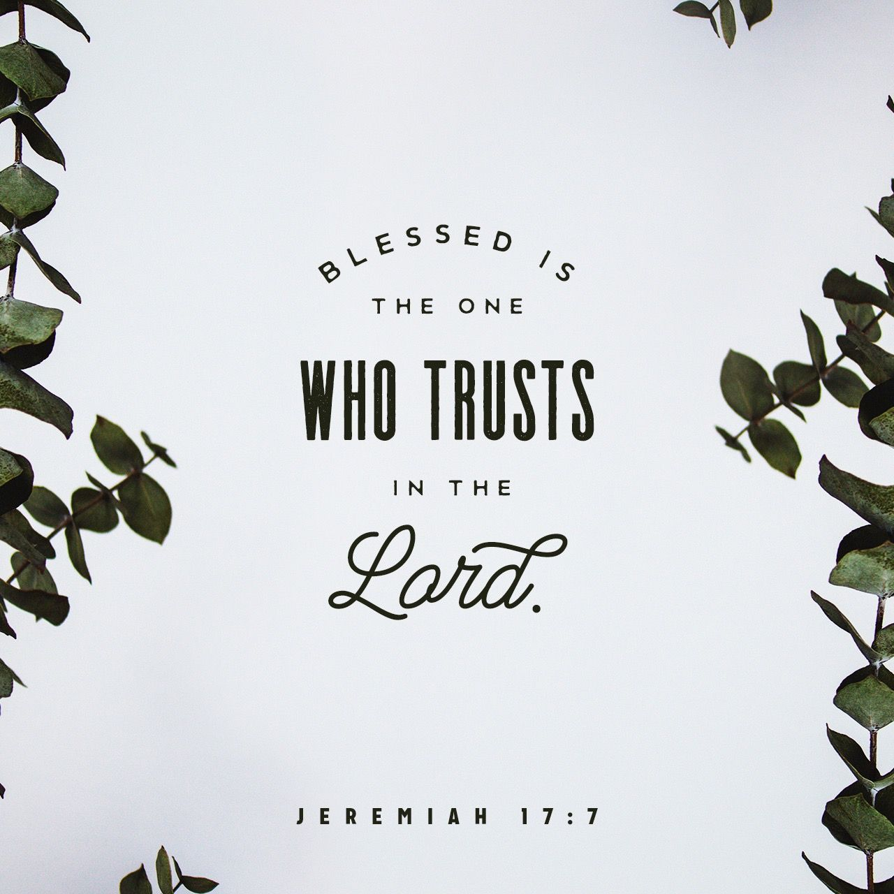 Jeremiah 177 NIV Bible apps, Youversion bible