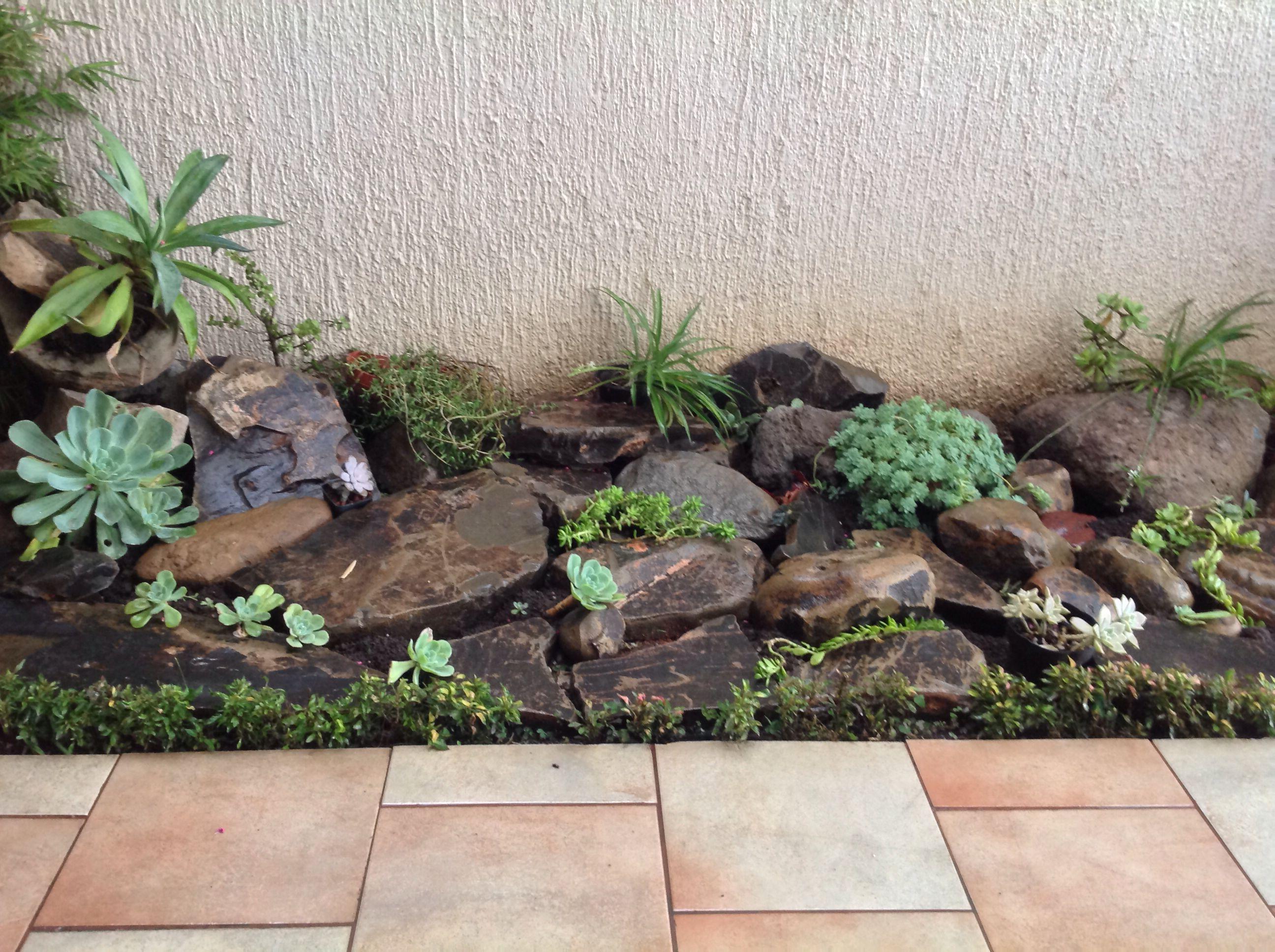 piedras y plantas de sombra, buena idea para decorar un