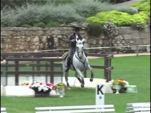 Amazing Horse-Rider Connection - Pedro Torres riding a Lusitano stallion, Oxidado, doing Working Equitation