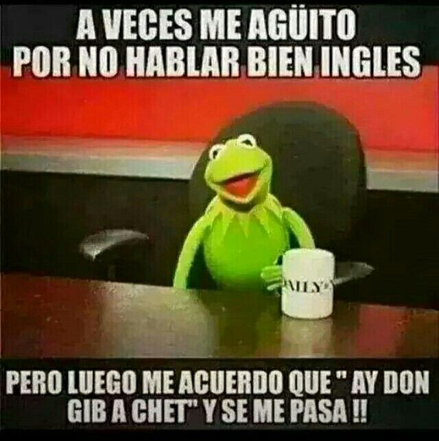 No Le Entendi Jajaja Creen Q Unos Dias De Cachifa En Gringolandia Es Suficiente Jajajajajajaja Por L Frases Divertidas Humor En Espanol Dichos En Espanol