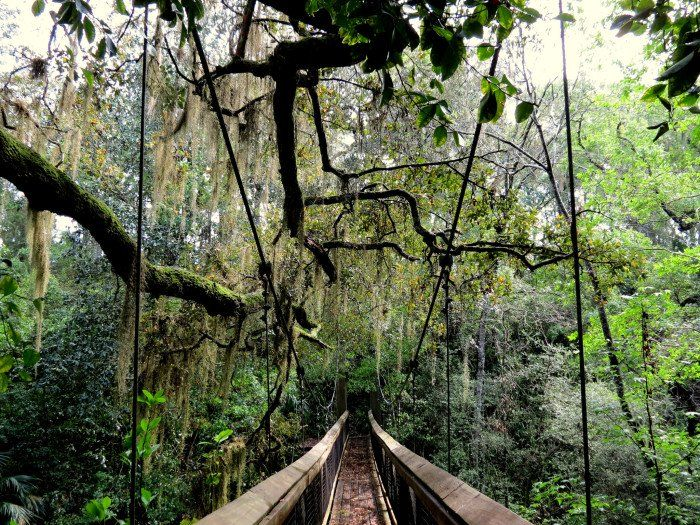 13 Enchanting Places In Florida You Never Knew Existed