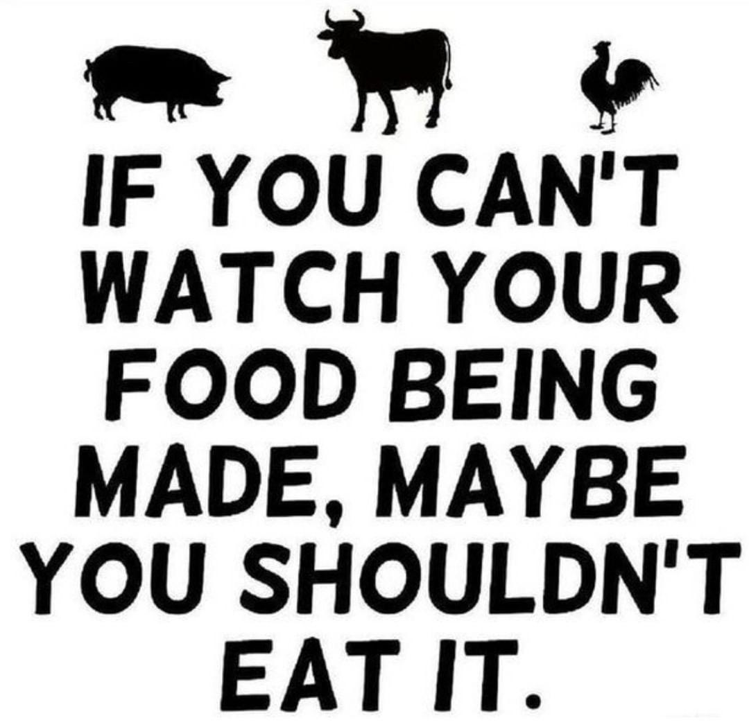 Pin By Srija On Vegan Girl Vegan Quotes Vegan Facts Vegetarian Quotes