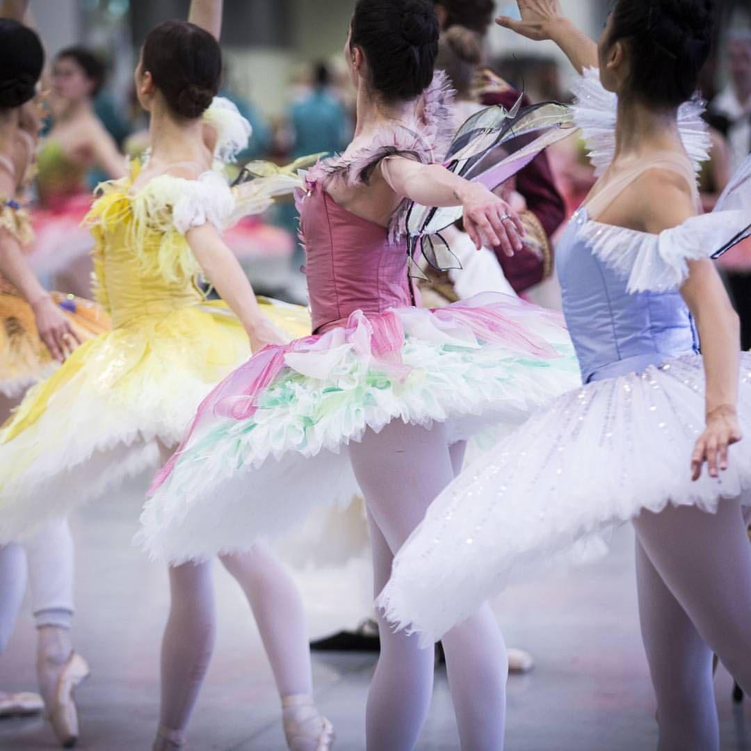 "The Australian Ballet on Instagram: ""A totally divine #TutuTuesday moment in our studios as we rehearse The Sleeping Beauty ... in costume!  #OneWeekToGo Benedicte Bemet, Amy Harris and Natasha Kusen  @klongersklongers"""